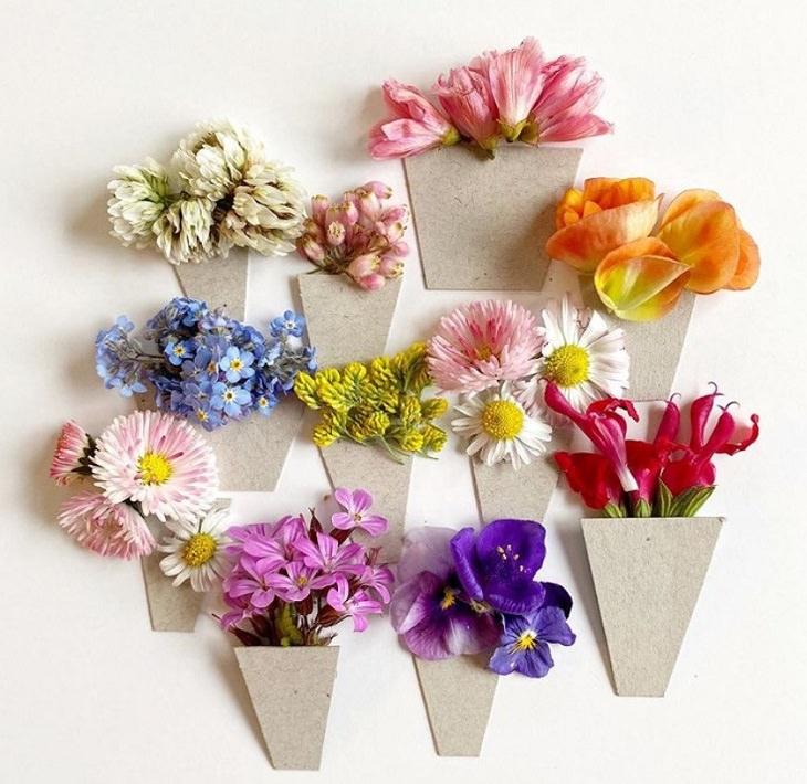 A arte botânica de Bridget Beth Collins
