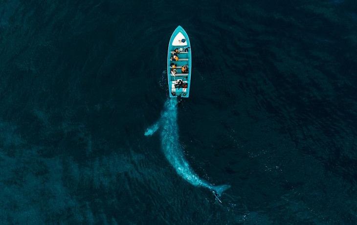 Fotos tiradas com drones