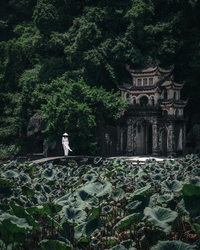 Fotos de Ryosuke Kosuge
