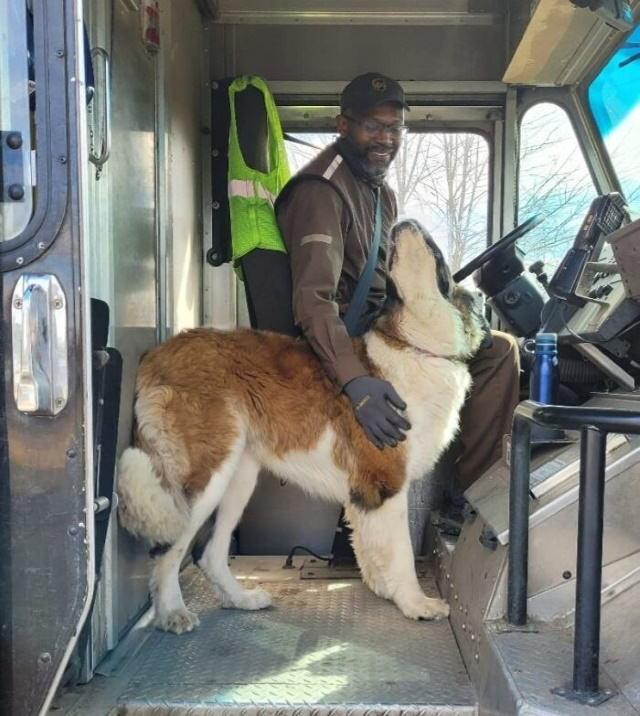 Motoristas da UPS tiram fotos com cães