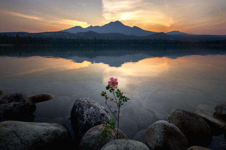 O mundo visto do topo de 15 belas montanhas