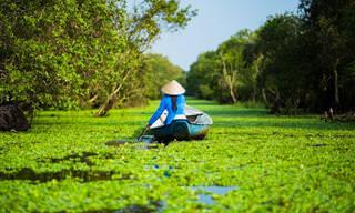 Veja as Paisagens e as Cores Exuberantes do Vietnã!