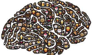 Uma Dieta Saudável Para o Cérebro Também é Importante!