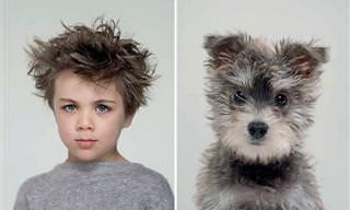 Incrível Quanto Esses Cachorros Se Parecem Com O Dono