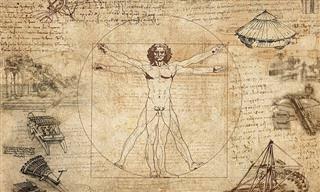 10 Fatos Curiosos Sobre o Corpo Humano
