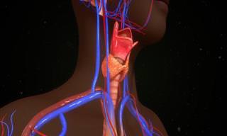 Informe-se: 10 Sintomas do Hipotireoidismo
