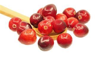 Veja 20 Motivos Para Consumir Cranberry