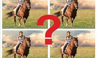 Teste Visual: Qual é a Imagem Diferente?