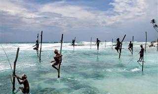 Seres Humanos, Natureza e Paisagens Conectados Nas Fotos de Pascal Mannaerts