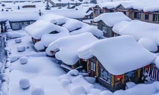 Belas e surpreendentes artes feitas pela neve