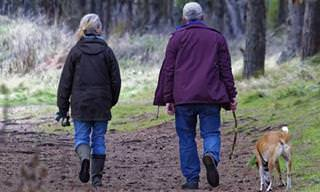 A Ciência Comprova: Envelhecer Traz Felicidade