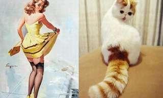 Gatinhas Que Pensam Que São Modelos