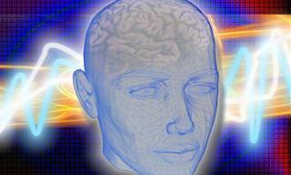 Piada do Dia: O Transplante de Cérebro