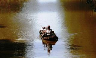 Uma História de Inspiração e Reflexão: O Velho Mestre e o Rio