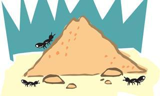 Maneiras 100% Naturais de Manter as Formigas Longe