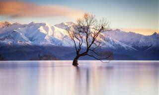 Da Islândia ao Canadá em15 belas paisagens
