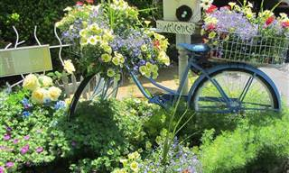 25 Formas de Transformar Móveis Velhos em Jardins Estupendos