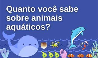 Teste: O que você sabe sobre animais aquáticos?