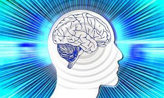 TESTE: Qual Hemisfério do Seu Cérebro Domina a Sua Vida?