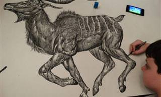 Impressionantes Desenhos de Animais Feitos de Memória