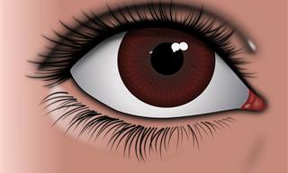 O Que os Seus Olhos Estão Tentando Dizer?
