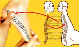 10 Maneiras De Tratar Problemas De Saúde Com Massagem