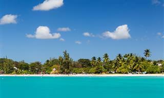Guia Turístico Para Barbados