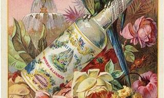 Perfumes tradicionais que você ainda pode comprar