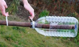 5 Ideias para reutilizar garrafas plásticas. Demais!