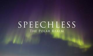 Expedição aos extremos da Terra - Pólo Norte e Pólo Sul