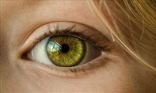 Descoberta da Ciência Promete Ajudar Pacientes Com Degeneração Macular