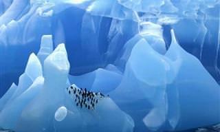 18 Icebergues Surpreendentes Formados Há Milhares de Anos