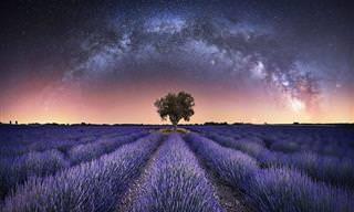 Explore as estrelas com essas fotos excepcionais