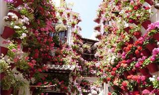 Córboda: A Cidade Das Flores Que Você Precisa Visitar na Espanha