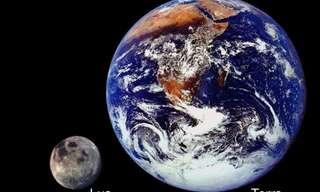 A Terra em Perspectiva