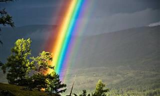 Confira as Perfeitas Imagens do Concurso de Fotografia do National Geographic