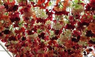 O Magnífico Festival de Flores de Chelsea