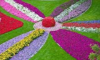 O Jardim do Paraíso de Al Ain