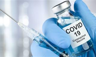 TALVEZ tenhamos uma vacina para Covid-19 para logo