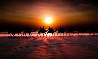 Fotos Que Celebram a Beleza Incomparável do Sol!