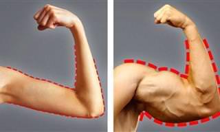 Esses alimentos ajudam a fortalecer músculos e ganhar peso