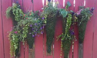 5 Guias Para Jardinagem Vertical