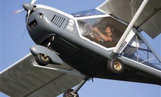Piada do Dia: O Piloto Automático