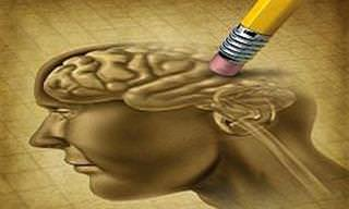 Reduza o Risco De Alzheimer Com Estes 10 Alimentos!