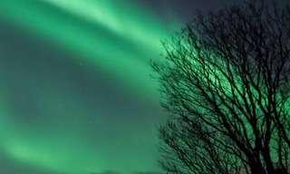 A Dança da Luz no Ártico