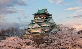 Deslumbrantes Paisagens Japonesas