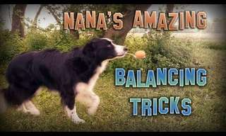Nana e Seus Incríveis Truques de Equilíbrio