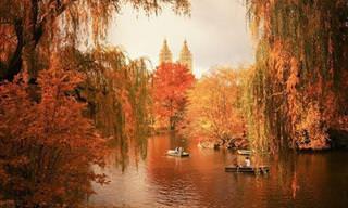 O Belo Outono em Nova Iorque