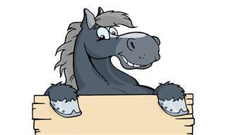 Esse Cara Não Consegue Distinguir Seus Dois Cavalos...