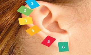 Tudo Sobre Reflexologia Auricular